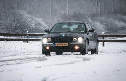 jaguar001.jpg