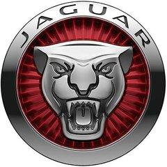 Jaguarman