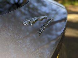 Jaguar-F-Type-P300-2021-22.thumb.jpg.e2c22b09d508aed918c045821b2debca.jpg