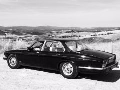 Jaguar in italie